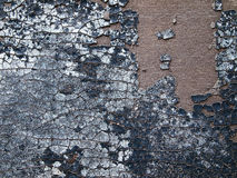 кожаная старая поверхность Стоковое Изображение RF