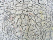 кожаная старая текстура Стоковое Изображение RF