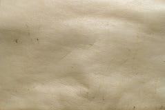 кожаная старая Стоковая Фотография RF