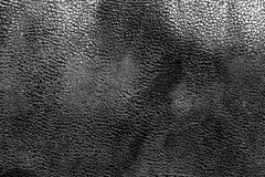 Кожаная текстура в черно-белом Стоковое Изображение RF