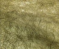 Кожаная текстура, кожаный цвет золота платья, textur кожи сияющее Стоковые Изображения