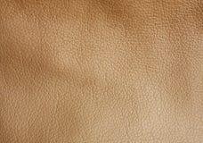 кожаная текстура Стоковая Фотография RF