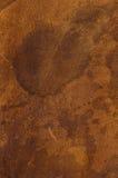 Кожаная текстура Стоковая Фотография