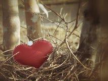 Кожаное сердце Стоковое Изображение