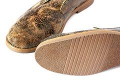 Кожаные ботинки на белой предпосылке стоковое изображение