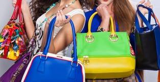 Кожаные изолированные сумки Стоковое Изображение RF