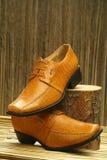 Кожаные официально ботинки Стоковая Фотография