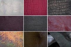 Кожаные текстуры Стоковое Изображение