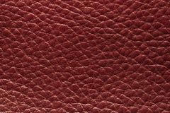 кожаный красный цвет Стоковая Фотография RF