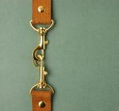 Кожаный ремень с carabiner Стоковая Фотография RF