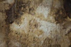 кожаный старый лист Стоковые Фото