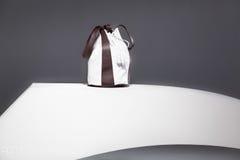 Кожаный sac Стоковая Фотография RF