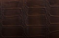 Кожаным текстура выбитая коричневым цветом Стоковая Фотография