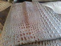 Кожа аллигатора Стоковая Фотография RF