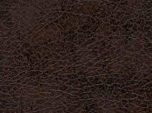 кожа безшовная текстура кожи tileable Макрос текстура Стоковые Фотографии RF