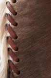кожа буйвола предпосылки Стоковые Фото