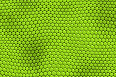кожа гада игуаны Стоковые Фотографии RF