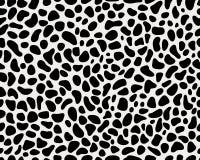 Кожа леопарда Стоковые Изображения
