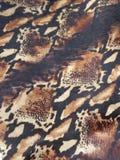 Кожа змейки гадюки Gaboon Стоковые Изображения
