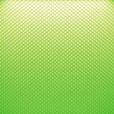 Кожа змейки цвета Стоковые Фото