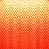 Кожа змейки цвета Стоковое Изображение RF