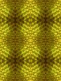 кожа золота Стоковые Фотографии RF