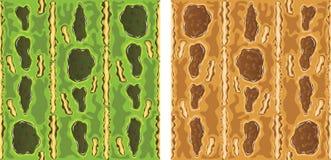 кожа лягушки Стоковая Фотография