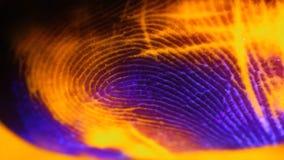 Кожа макроса, согласно створкам чего пропуская краска стоковое фото rf