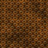 кожа панцыря Стоковое Изображение RF