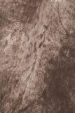 кожа предпосылки Стоковое Фото