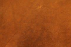 кожа предпосылки Стоковое фото RF