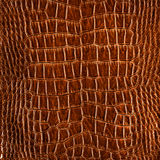 Кожа роскоши Brown Стоковая Фотография RF