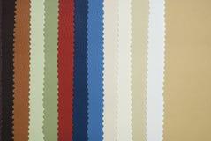 кожа цвета диаграммы Стоковые Изображения