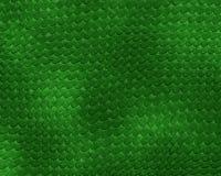 кожа ящерицы Стоковые Фотографии RF