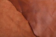 кожа Стоковые Фото