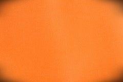 кожа Стоковое Изображение RF
