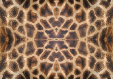 кожа giraffe стоковое изображение