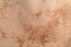 кожа grunge предпосылки Стоковое Изображение RF