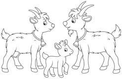 Коза, ребенк и он-коза Стоковое Фото