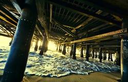 козелок вниз Стоковая Фотография RF