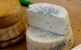 Козий сыр фермы естественный органический белый Стоковое Изображение RF