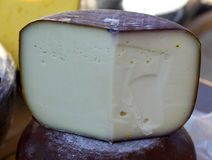 Козий сыр фермы естественный органический Стоковое Изображение