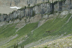 Низкопробные скалы Timpanogas Стоковое Изображение