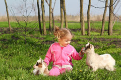 козочки ребенка немногая 2 Стоковые Фото