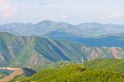 Козы в горах в Албании Стоковая Фотография