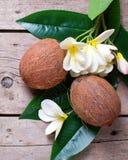2 кокоса на листьях и цветках plumeria Стоковые Фотографии RF