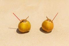 2 кокоса с выпивая соломой на песочном тропическом пляже Море Стоковые Фотографии RF
