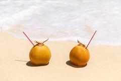 2 кокоса с выпивая соломой на песочном тропическом пляже Стоковое Фото
