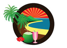 Кокосовая пальма пляжа Стоковое Изображение