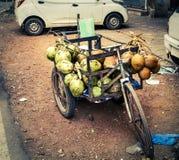 Кокосы для надувательства на местном индийском рынке Стоковая Фотография